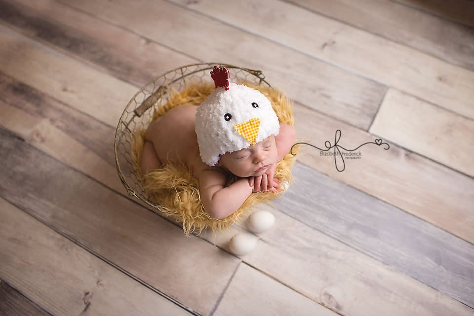 Chicken Newborn Session | Farm Newborn Session | Newborn in a basket | Newborn wire basket | Newborn Photography Ideas | CT Newborn Photographer Elizabeth Frederick Photography www.elizabethfrederickphotography.com