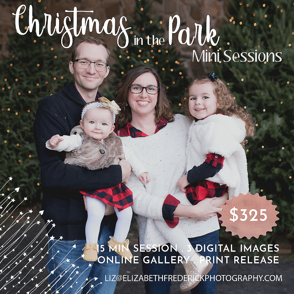 Christmas in the Park Mini Session Family Mini Sessions CT Photographer Elizabeth Frederick Photography